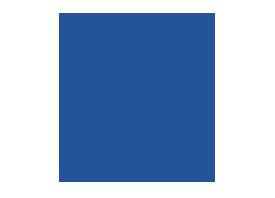SASF Logo